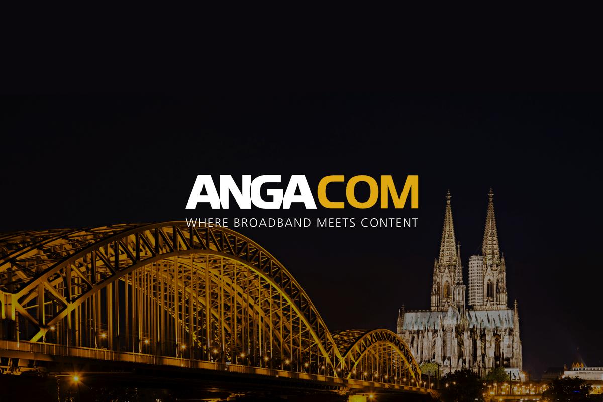 test Twitter Media - ANGA COM claims digital success https://t.co/b5wWclqsIx https://t.co/q5sc8KPZRw