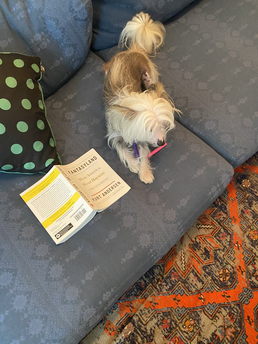 Leonidas the rescue puppy loves the work of @KBAndersen https://t.co/6Iqzo3OnXR