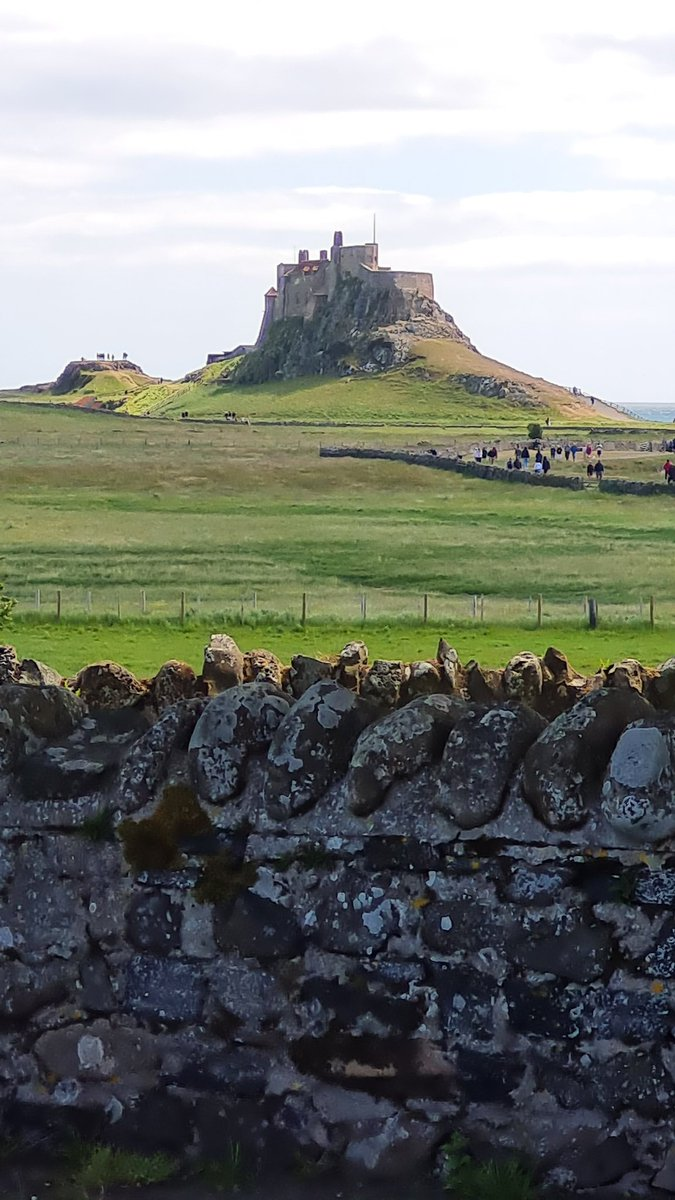 The suns shining for our day trippers today in @NTlindisfarne @HolyIslandCause @LoveSeahouses #northumberland #coachtrip