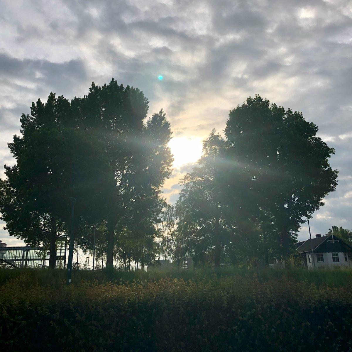 Niet te warm op 12 juni 2021 #goedemorgen #buitenmens #hollandsekade #nswandeling #breukelen #kockengen #harmelen #woerden #platteland #groenehart #santosha #adem https://t.co/kdYrgp6J8z