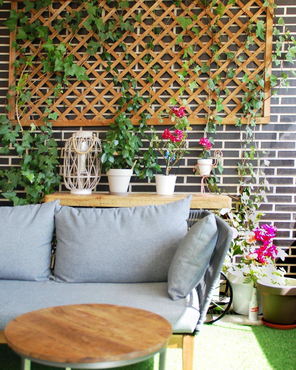 May we suggest: plants.  #kaiyo #buyused #sustainable #houseplants #ecohome #plantdecor #homedecor #homedecorating #apartmenttherapy #abmathome #apartmenttherapy #washingtondchomes #newjerseyhomes #newyorkhomes #marylandhomes #virginiahomes #recycle #upcycle #reduce #reuse #home https://t.co/k0s212SRF3