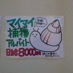 日給8000円、カタツムリ捕獲のアルバイトが募集中!