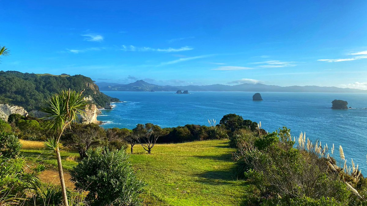 If anyone was concerned, Cathedral Cove is still pretty...or was yesterday.