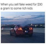 Image for the Tweet beginning: 420 MEME OF THE DAY