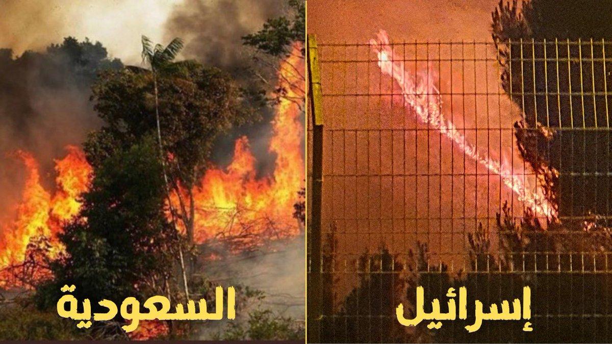نعم للبناء ولا للدمار !الحرائق التي التهمت اشجار عسير  اليوم وضواحي القدس وحيفا