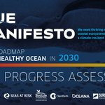 Image for the Tweet beginning: 📝 The #BlueManifesto is a