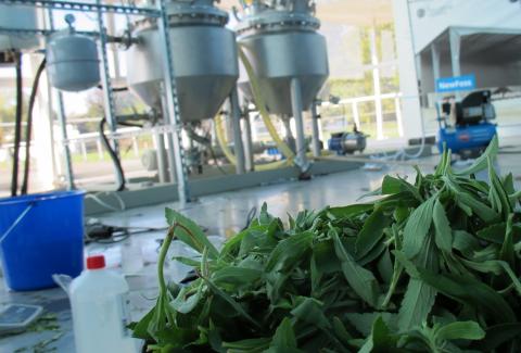 test Twitter Media - Voor de agenda: 22 juni is het 4e innovatiecafé #CIRCULAR-BIO met drie ondernemers over alternatieve grondstoffen & toepassingen #biobased grondstoffen! Laat je inspireren, verrassen & denk vooral mee! Locatie: online - 14.30-16.00. Check https://t.co/6fqk5DSoIF https://t.co/pnwdv50woR