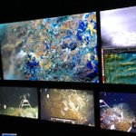Image for the Tweet beginning: Peek inside #ROVJason video, sonar
