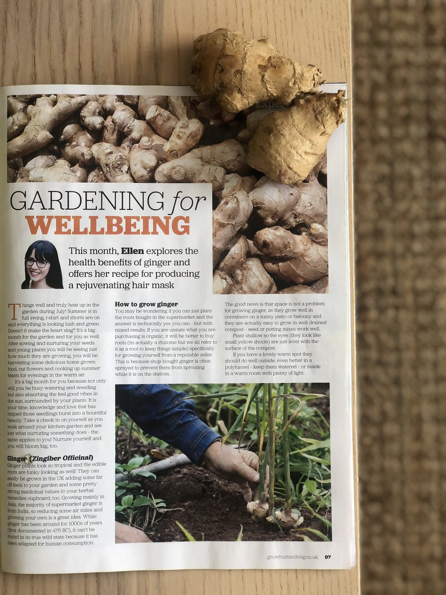 Do you grow Ginger? Check out how to & a recipe for a hair mask using Ginger & Aloe Vera in my wellbeing column for this months @GYOmag 🌱   #wellbeing  #health #gardening #plantsmakepeoplehappy https://t.co/rDerh8KqaG