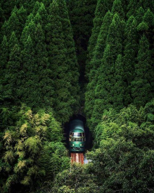 Japan 🇯🇵🌲 📸 fuji_sun__ Japan is true nature friendly, Beautiful picture. #landscape #nature #photooftheday #travelphotography #picoftheday  #wanderlust #adventure #hiking #explore https://t.co/2EMT5aGqXf