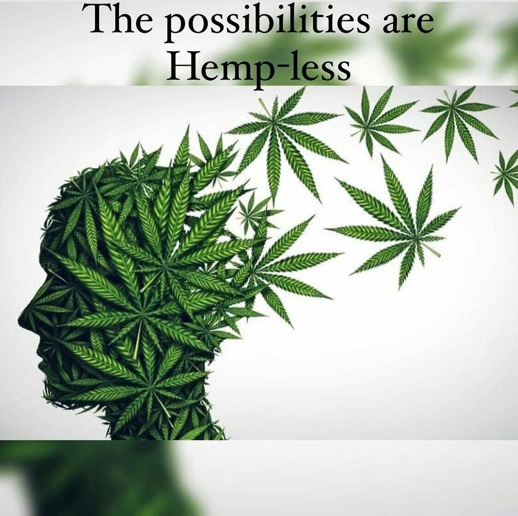 Indeed they are so make it count! ☺️🌱 Follow, Comment, Like, Share #NewKidsOnTheBlock #MMJ #Daily #Organic #BHFYP #Cannabis #Edibles #Bud #Love #Society #Vape #Terps #Joint #HumpDay https://t.co/7jTQ1Jww2e https://t.co/n1xwXGsyMe