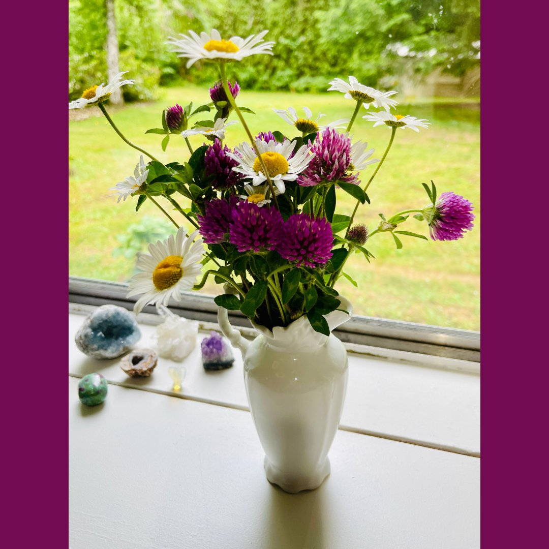 🌻 🌺 I picked these along our canal trail--clover and daisies in a $1 vase. 💜 Flowers in my writing studio.  . . . . . #authorsofig #writerslife #amwriting #indieauthor #booklovers #suspense #thriller #noir #femmesnoir #authorlife #love #creativity https://t.co/rrnipzpkUz https://t.co/QyFwg4epBv