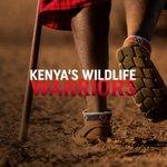 "Image for the Tweet beginning: ""Kenya's Wildlife Warriors"", a 4"