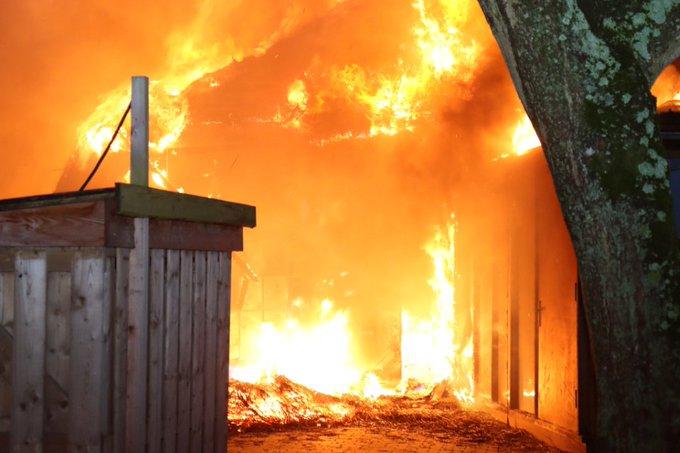 Jeugddetentie voor brandstichters Plaswijckpark https://t.co/07A4TtPOEN https://t.co/jme4ZU19L6