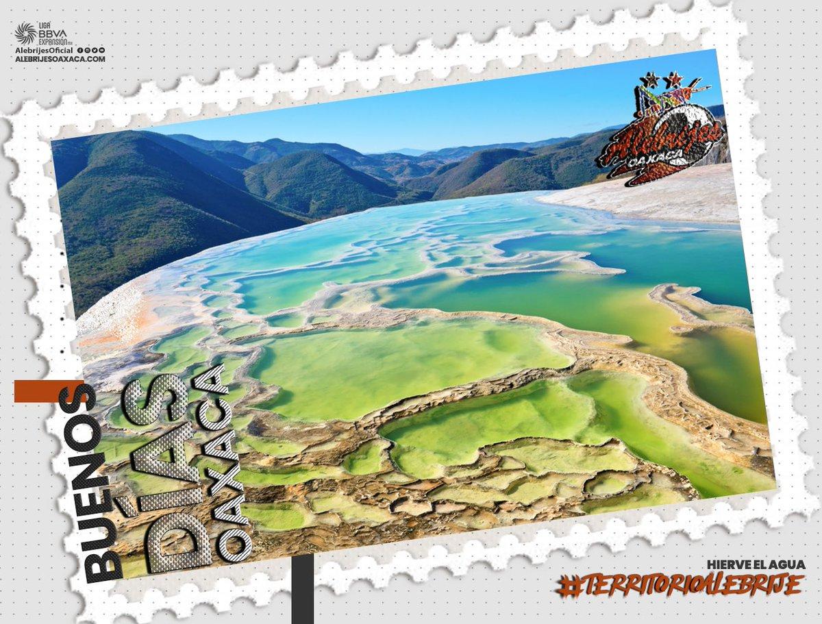 📸🤩| Buenos días afición, excelente jueves te dejamos esta postal de #HierveElAgua para iniciar el día con todo 👊🏼. #TerritorioAlebrije   #AlebrijesEsOaxaca💚🖤🧡 #Alebrijes🦗 https://t.co/II9PWbGcH5