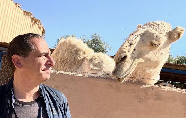 Yesterday, I meet camel.  Today, I eat camel.  Follow me on Instagram: https://t.co/QwfI2rVGfS https://t.co/b00ByaGYB1