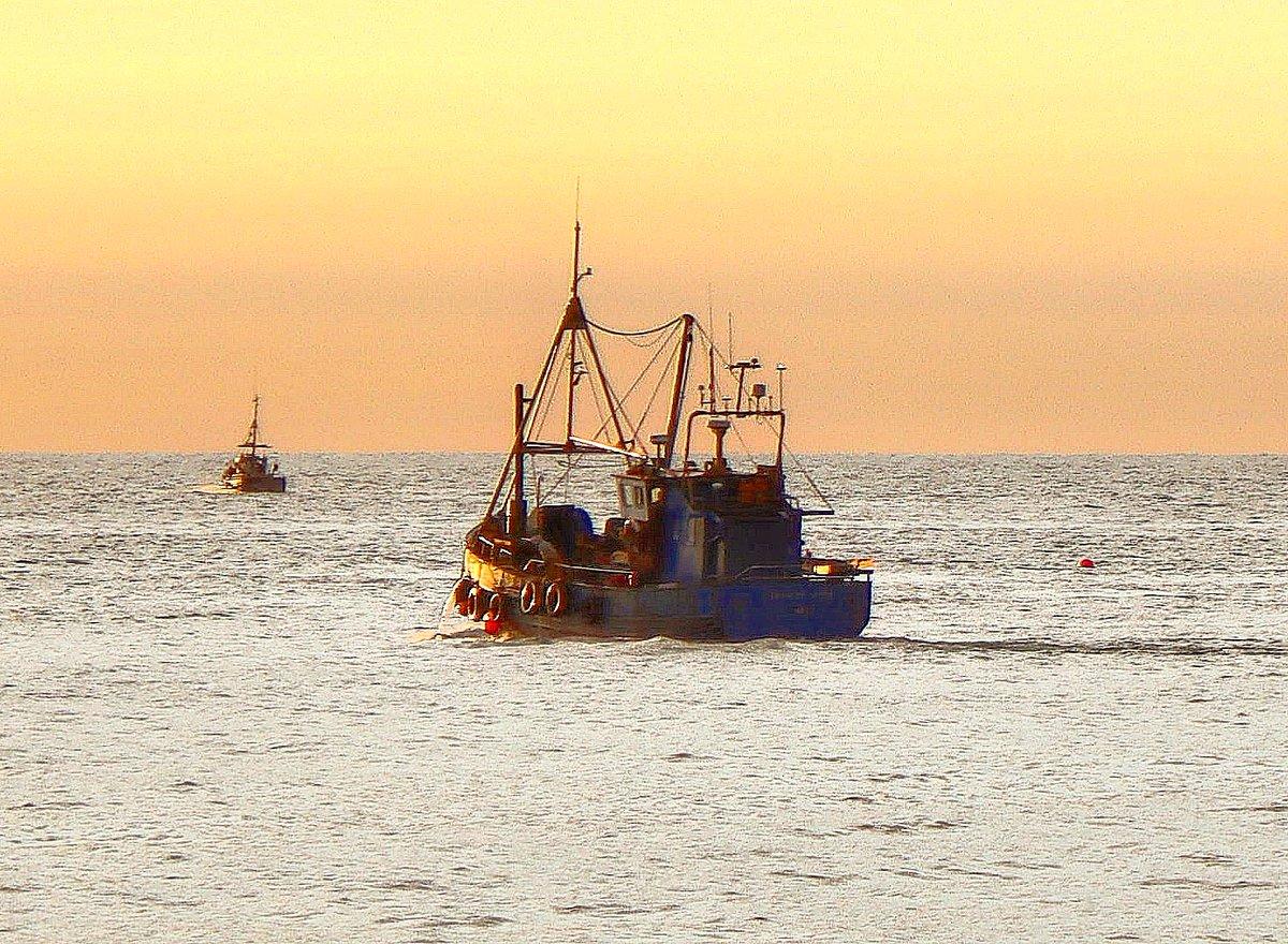 "Early morning commuters ""Deborah Anne"" #sunrise #sea @visitwicklow @craigophoto @MetAlertIreland @bbcniweather @WeatherCee @angie_weather @barrabest @PictureIreland @CarlowWeather @deric_tv @LensAreLive @StormHour @WhatsOnWOW @ancienteastIRL @ThePhotoHour #vmweather @morningecfm https://t.co/d4HtbTyRG3"
