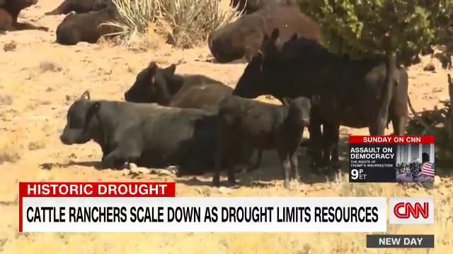 T.J. Atkin's family has been in the cattle ranching business for nearly a century. In that time, he says, a drought has never hit their operations this hard. https://t.co/eNuts5knxS https://t.co/ljClzxfA5B
