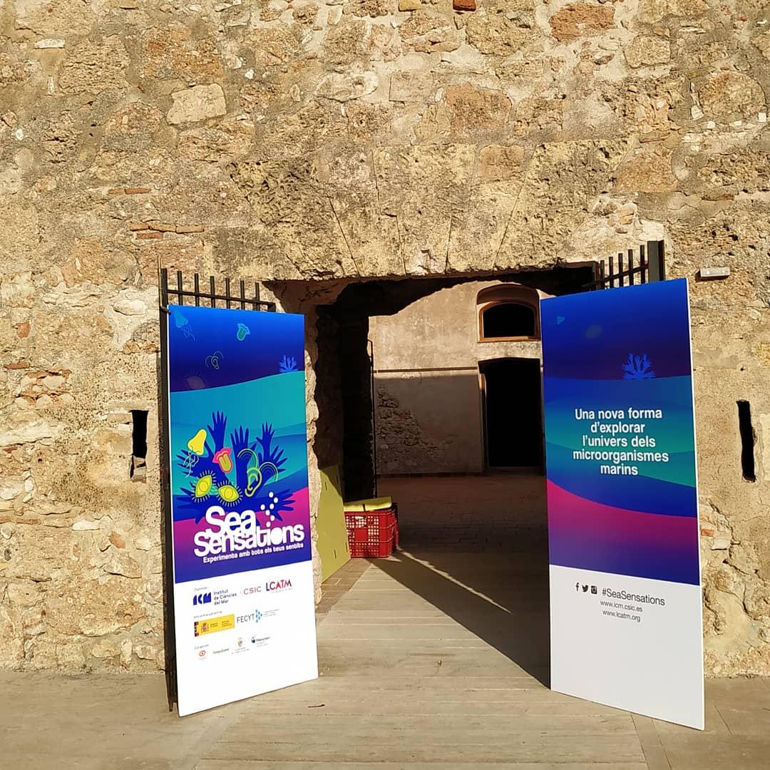 test Twitter Media - Avui 19 i demà 20 de juny al Castell de Sant Jordi de l'#AmetllaDeMar últims dies descobrir l'immens univers dels #microorganismes #marins, les seves característiques i com interaccionen entre ells des d'una nova perspectiva. #SeaSensations de @ICMCSIC @LCATMon i @FECYT_Ciencia https://t.co/87zKuchZ11