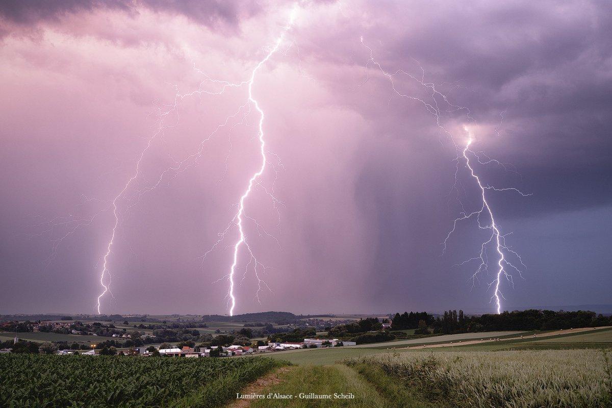 Superbe lumière crépusculaire ponctuée de plusieurs coups de #foudre ramifiées, en #Alsace, ce 18 juin. Photo par Guillaume Scheib #orages #keraunos