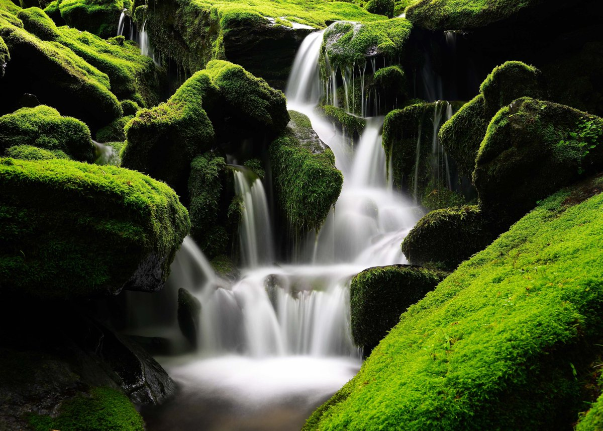 Image By: ajs1980518 #DownloadTheApp https://t.co/CFR2TKIdd0 #waterfall #rocks #moss #nature #green #photooftheday #beautiful #amazing #awesome #HDWallpapers #wallpapers #Download https://t.co/ltj48nq1Pv