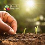 Image for the Tweet beginning: Finalmente a Palermo l'Azienda agricola