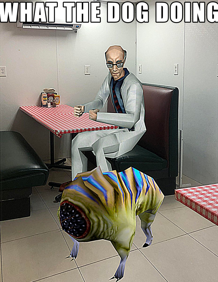 RT @KinoFabino: What the dog doing https://t.co/Vb1ktB2uP2