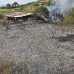 Image for the Tweet beginning: #notizie #sicilia Incendio a Ustica spento