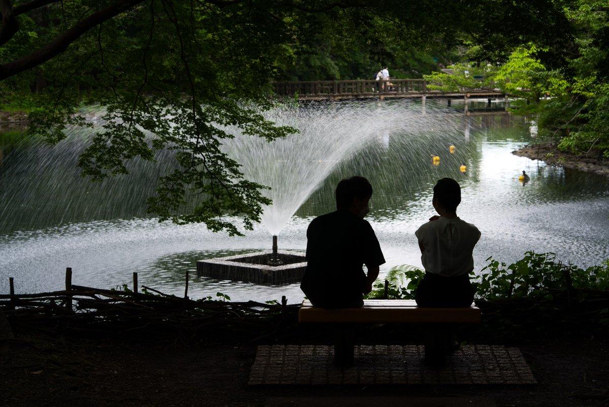 噴水を見ている二人  #東京カメラ部 #井の頭公園  #SonyAlpha https://t.co/6AvpOR6PQQ