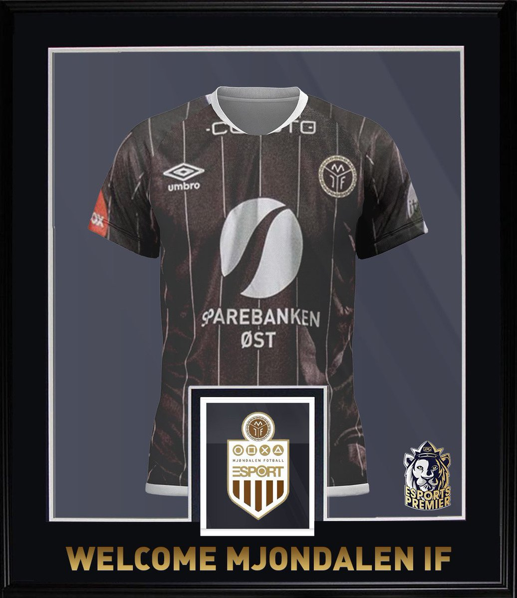 🤩 Welcome @MIFproclubs into the @VPGPremier !   🌍 Nationality: 🇳🇴   🏆 Ayoob a fantastic coach, will definitely be fighting for the title. Very experienced, hard working and ready to take every game!  #MIF #FIFA21 #ProClubs #VPG https://t.co/hsYNmXjPma