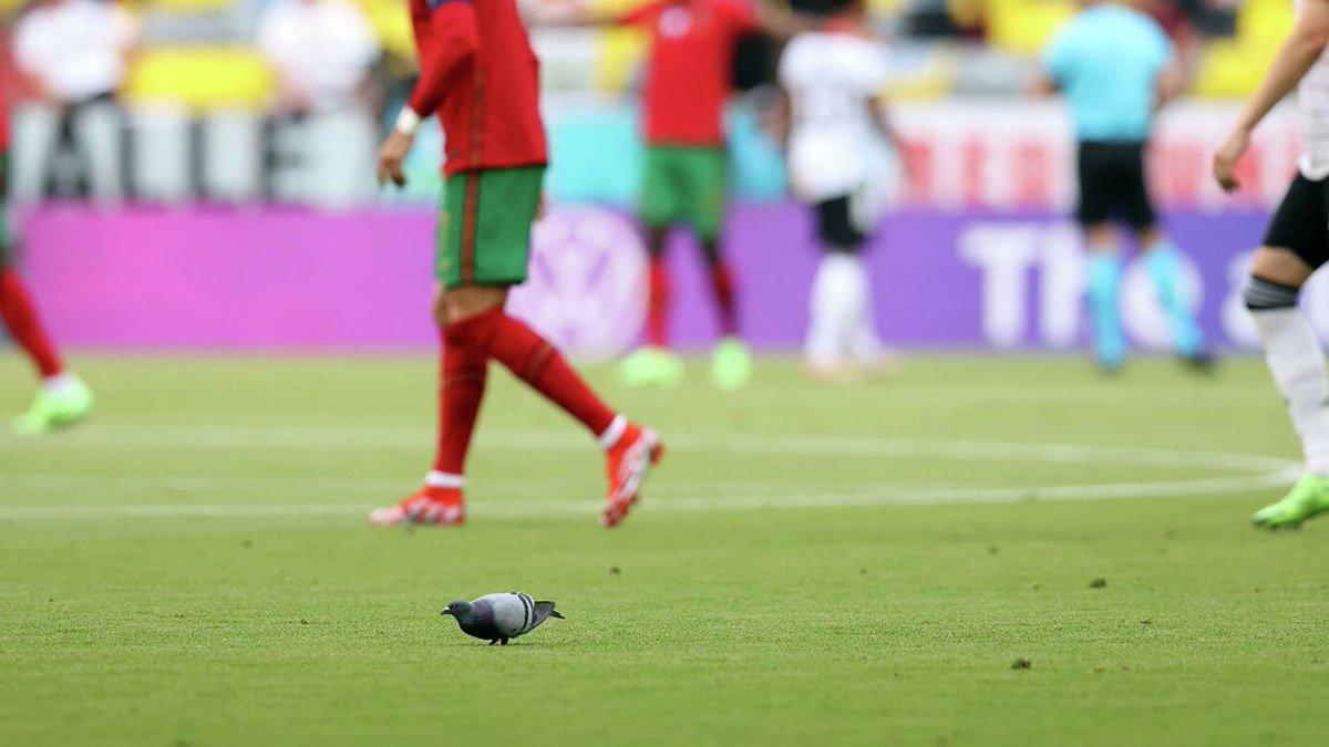 @koesterfabian's photo on UEFA