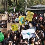 Image for the Tweet beginning: #FridaysForFuture Catania e Palermo, #ExtinctionRebellion,