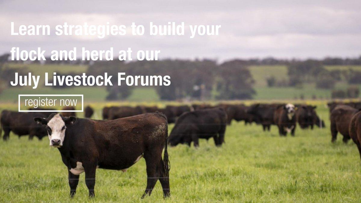 Kimba livestock forum on July 15. Details 👇