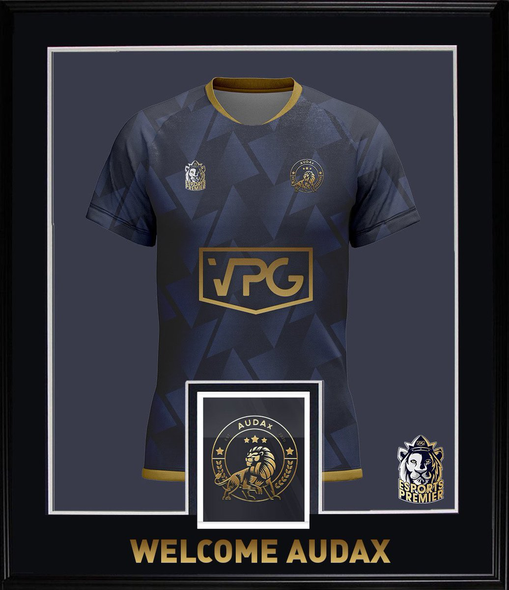🤩 Welcome @Audax__ into the @VPGPremier !   🌍 Nationality: 🇬🇧   🏆 Champions of the Premier South, now looking to win the Esports Premier. A lot of talent within the team that can definitely challenge! Watch out for the name 🦁   #Audax #FIFA21 #ProClubs #VPG https://t.co/D52pIk2FvT