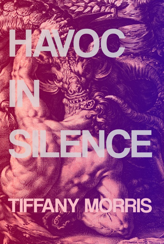 Cover of HAVOC IN SILENCE  by Tiffany Morris