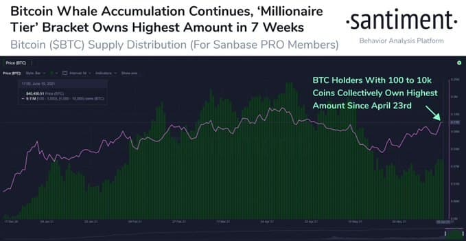 cel mai bun bitcoin trader twitter)