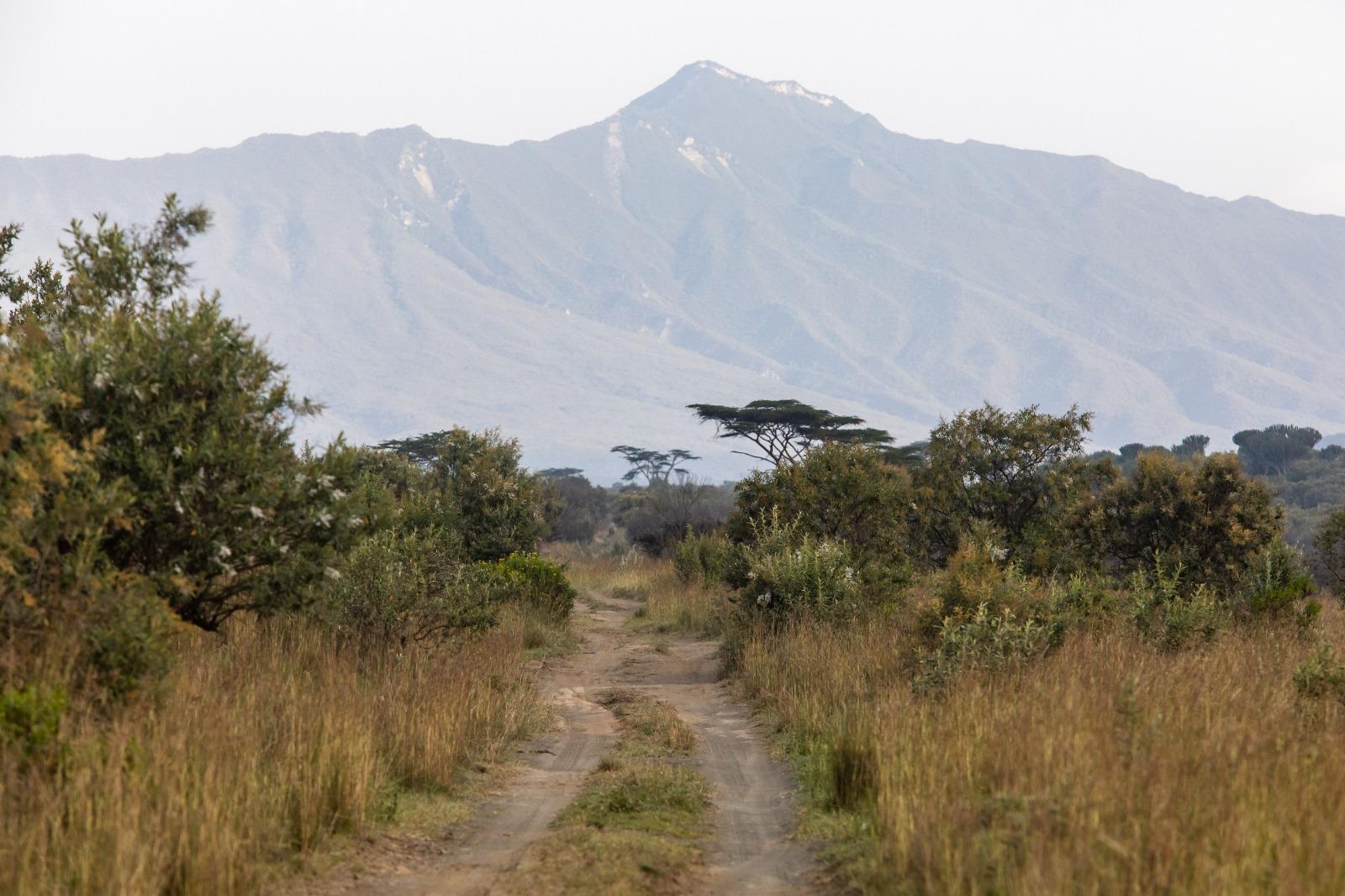 WRC: Safari Rally Kenya [23-27 Junio] - Página 2 E4gmv47XMAMt5SK?format=jpg&name=large