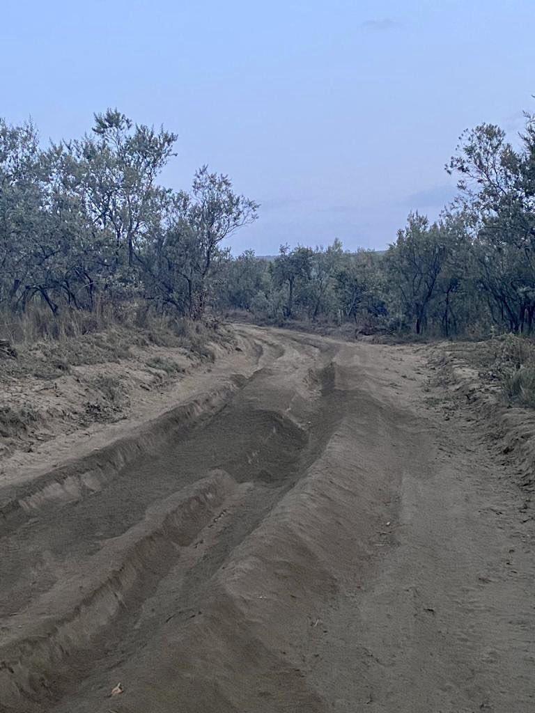 WRC: Safari Rally Kenya [23-27 Junio] E4gxqukXMAIU8GU?format=jpg&name=medium