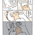 新しい枕を買っても?ペットと一緒に寝るとこうなりがちw
