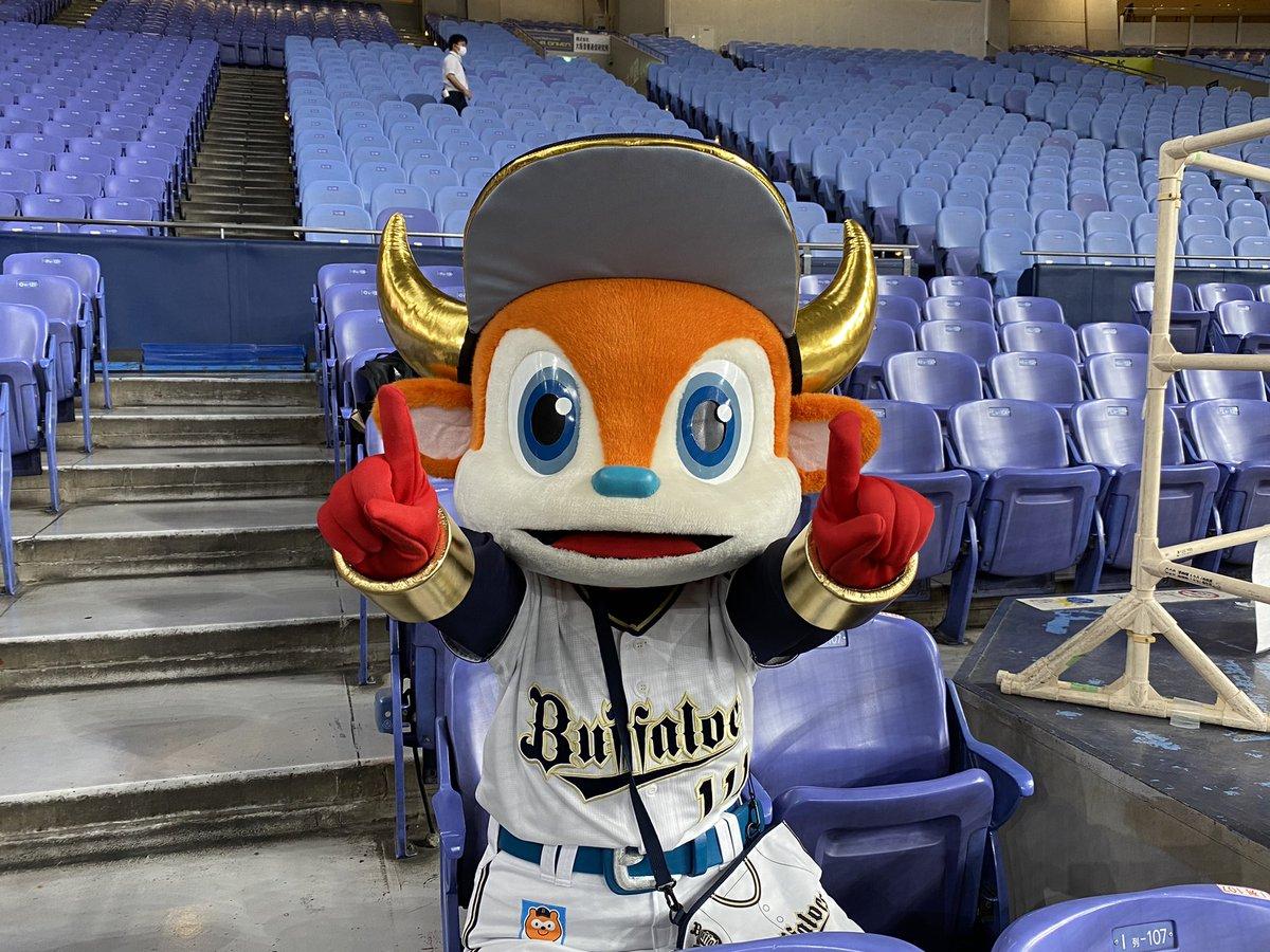 11連勝すれば84年以来37年ぶり! 8勝2分で負け知らずの濱野圭司アナは9勝目を目指します! #Bs2021...