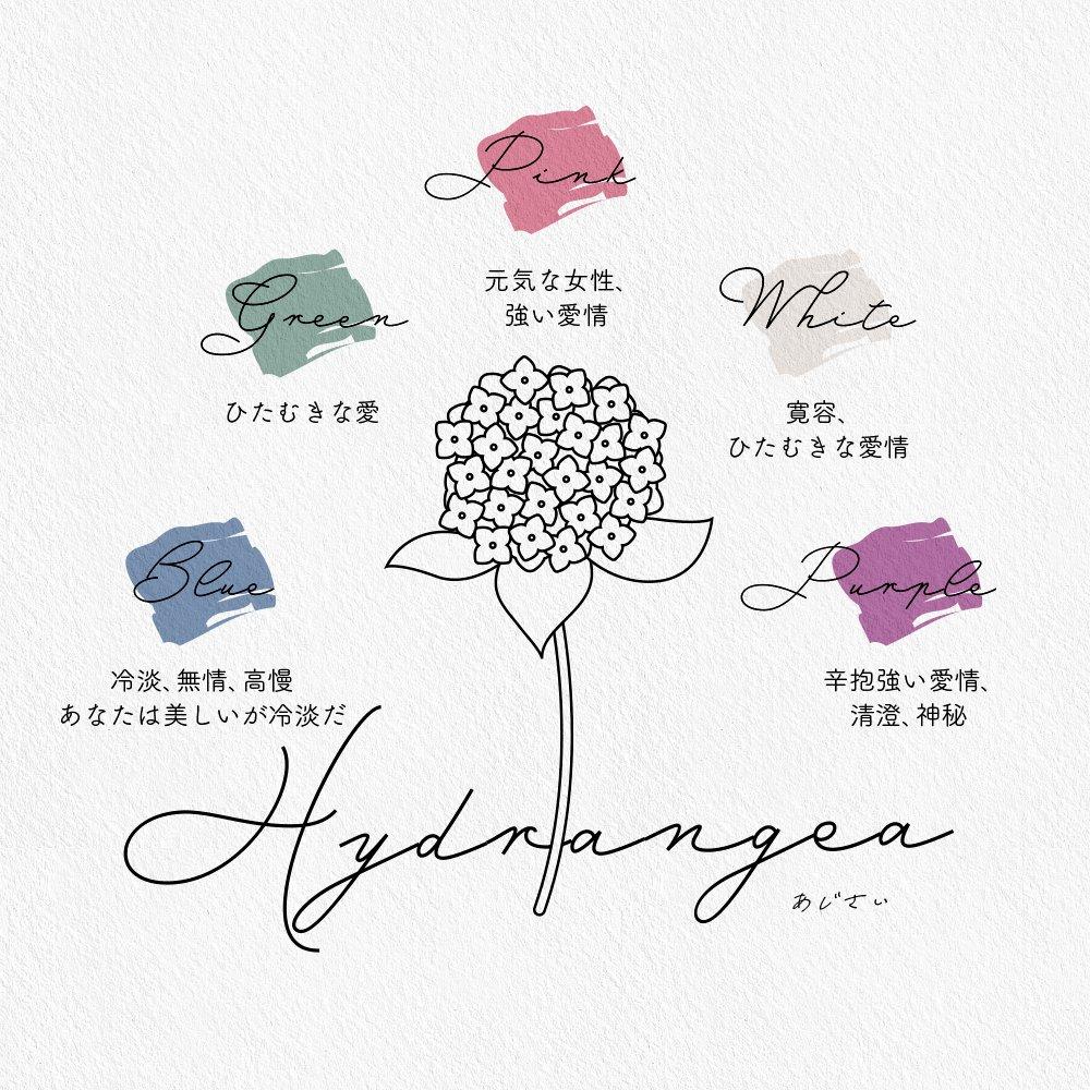薔薇やチューリップを贈る時に役立つ!色別の花言葉まとめ!