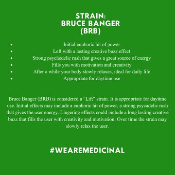 wearemedicinal: One of our available strains, Bruce Banger {BRB}. Click the images for more information on this specific strain. 🌱💚 #WeAreMedicinal #CannabisCommunity #cannabisindustry #cannabiscultivation #CannabisIsMedicine #CannabisEducation #cannabismedicine