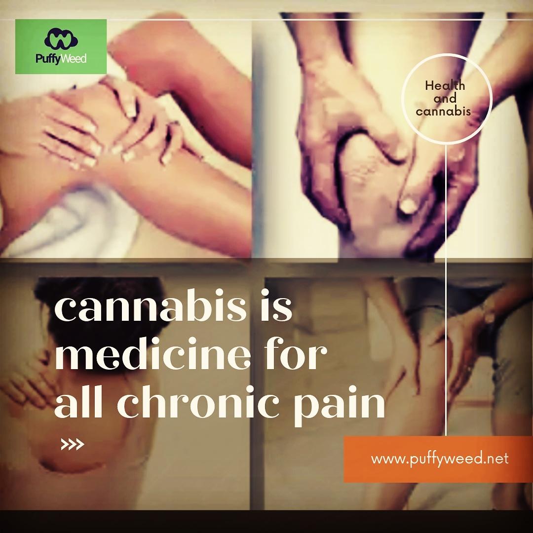 puffyweedinc: With cannabis around, chronic pain no longer counts  #puffyweed #CannabisCommunity #cannabis #cannabisindustry #weed #hemp #marijuana #Nigeria #Africa