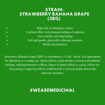wearemedicinal: One of our available strains, Strawberry Banana Grape 🍓🍌🍇 {SBG}. Click the images for more information on this specific strain. 🌱💚 #WeAreMedicinal #CannabisCommunity #cannabisindustry #cannabiscultivation #CannabisIsMedicine #CannabisEducation #cannabismedicine