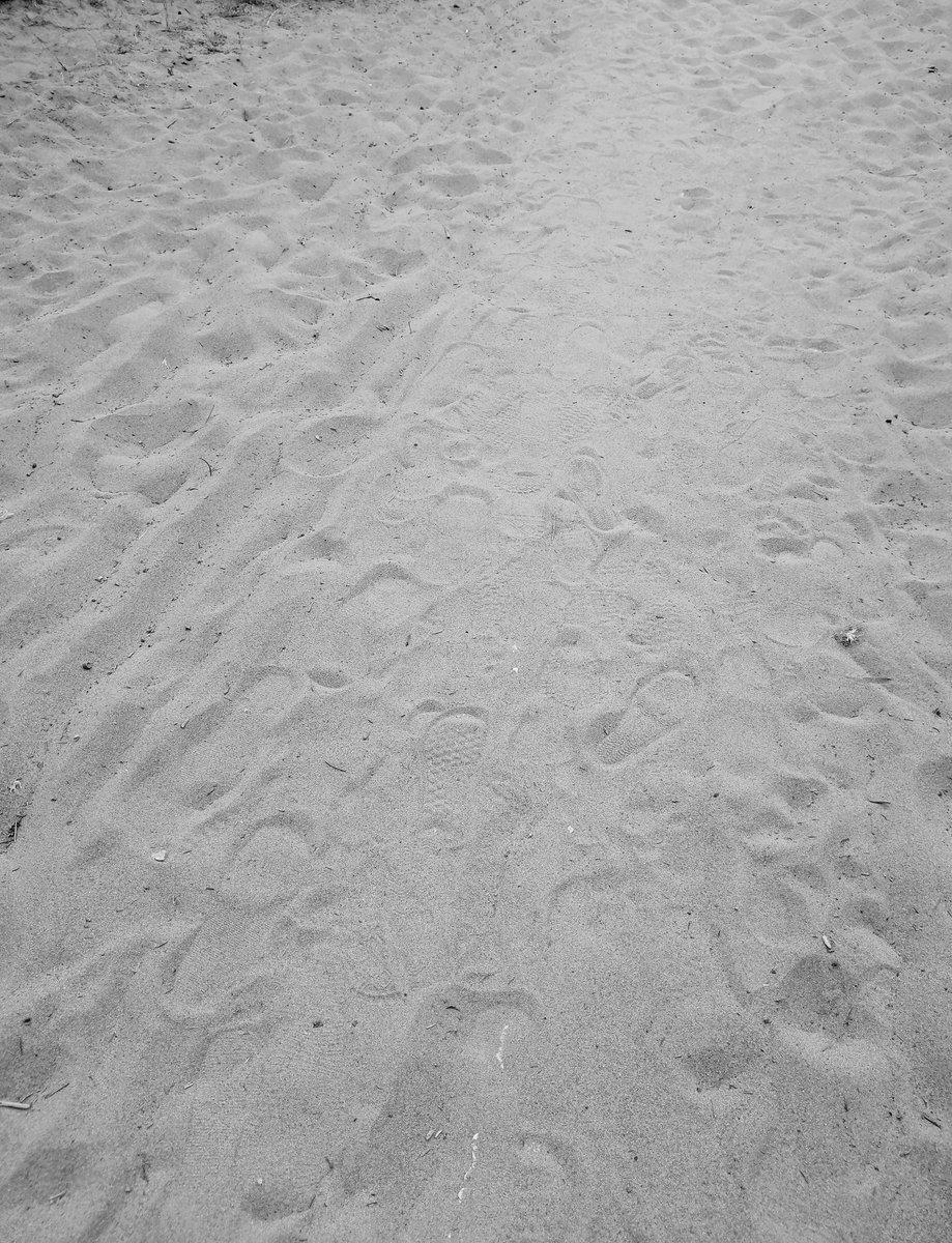 #Camminando