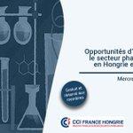 ❗️#Webinaire OPPORTUNITÉS D'AFFAIRES POUR LE SECTEUR #PHARMACEUTIQUE EN #HONGRIE ET EN #POLOGNE. ➡️ Proposé par la CCI France Hongrie et la CCi France Pologne en partenariat avec le @LeemFrance  📅7 juillet à 14h00 Infos et inscriptions 👉🏻https://t.co/kd6J9aUt4b #frenchhealthcare