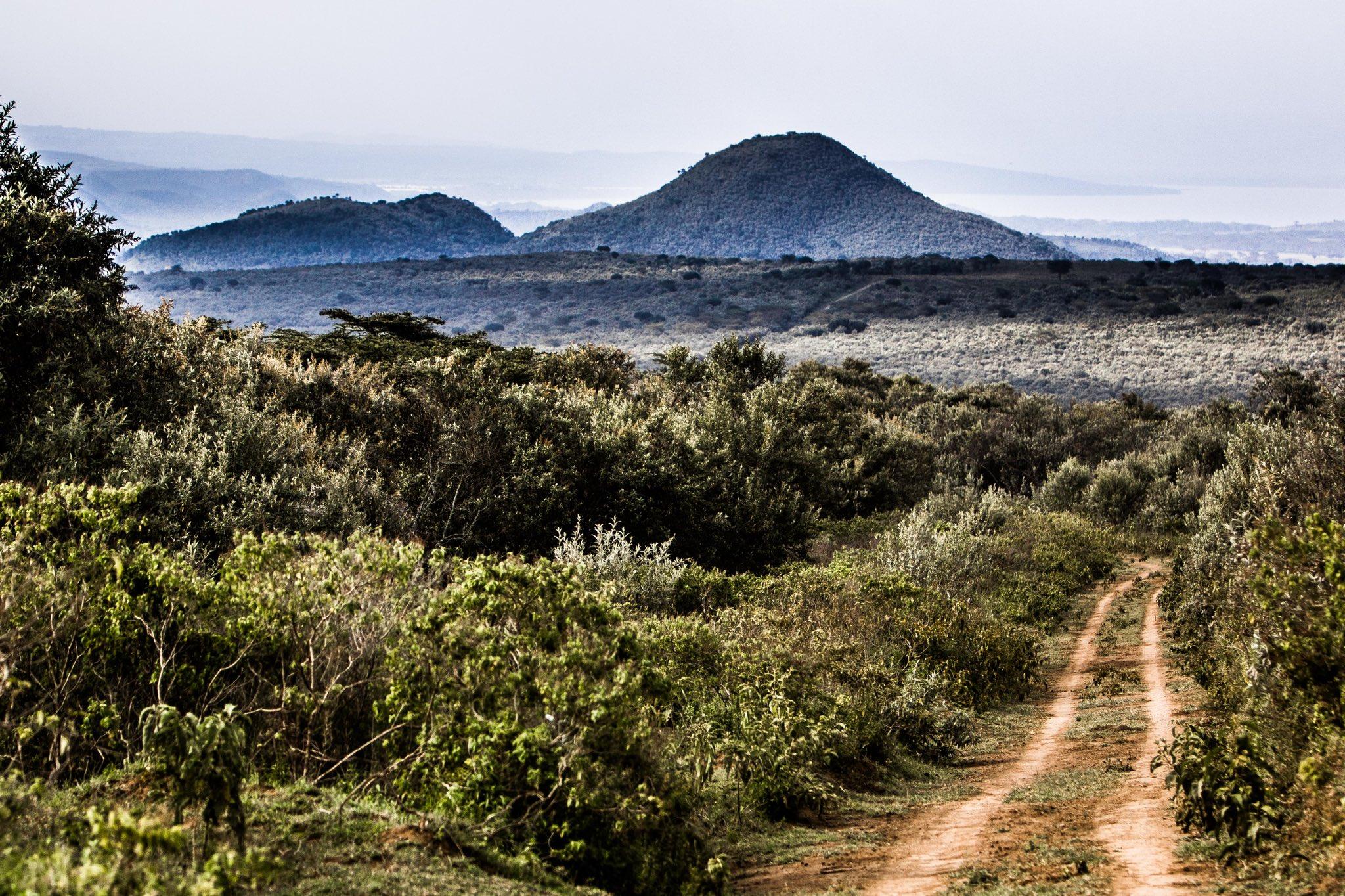 WRC: Safari Rally Kenya [23-27 Junio] - Página 2 E4pL8YaXMAcsMCj?format=jpg&name=large