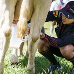 Image for the Tweet beginning: SPY: Checo's milking style involved