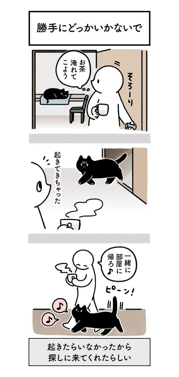 幸せなひと時!いつも一緒にいようとしてくれる猫のほのぼの絵日記!