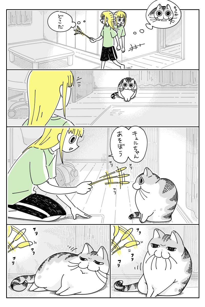 遊ぶ気はないけど離す気もない?可愛さがあふれる猫漫画が話題に!
